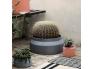 ferm-5344_UEbertopf-Vase-Beton-Pot-Dark-Grey-klein-von-Ferm-Living_b3.jpg